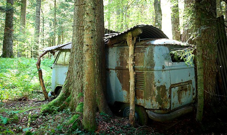 forest find rescue of a VW 1955 Panelvan
